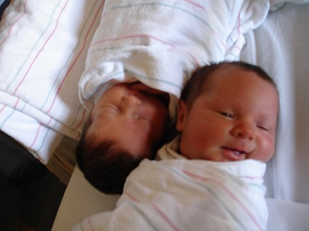 Max and Chloe a few hours old